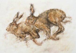 Racing Hares