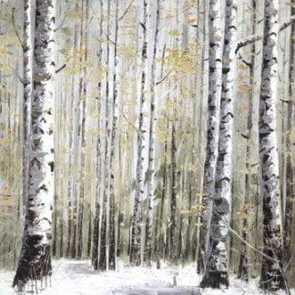 *Winter Dreams*