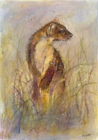 Pine Martin By Kate Wyatt Signed Limited Edition Watercolour on Paper Mounted