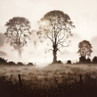 A Day to Dream - Signed Limited Edition Print by John Waterhouse