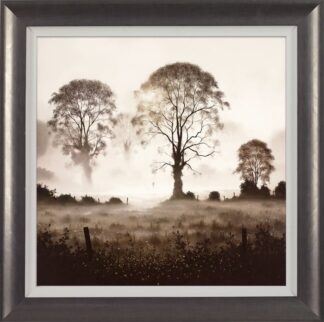 A Day to Dream - Signed Limited Edition Print By John Waterhouse - Framed