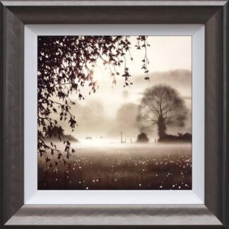 Enchanted Day - Signed Limited Edition Print By John Waterhouse Framed