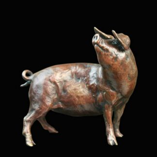 Pig - Signed Limited Edition Bronze Sculpture From Michael Simpson