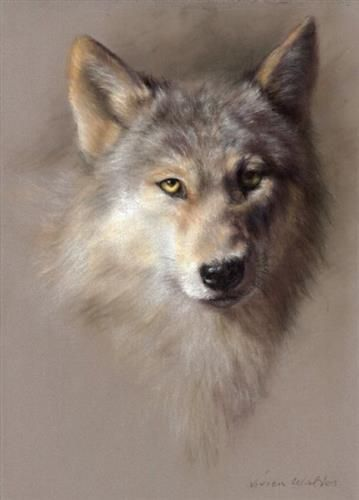Beauty In the Beast - Signed Limited Edition Print by Vivien Walters
