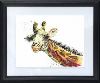 Affable Alfie by Jos Haigh Framed