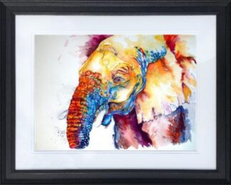 Nosey Nigel Small by Jos Haigh Framed