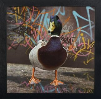 Puddle Town - Signed Limited Edition Paper Print by Paul James - FRAMED