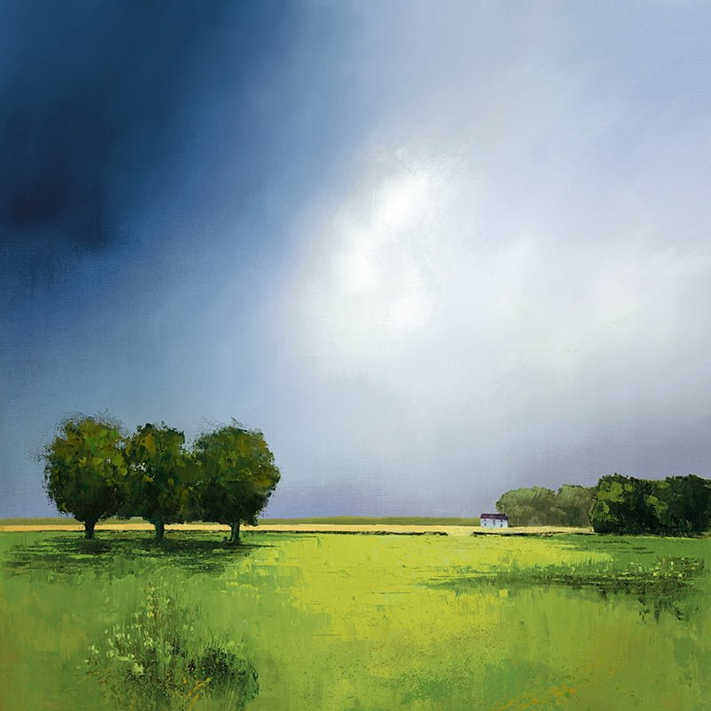 Green Fields Of Home - Signed Limited Edition Paper Print by Barry Hilton Mounted And Unframed