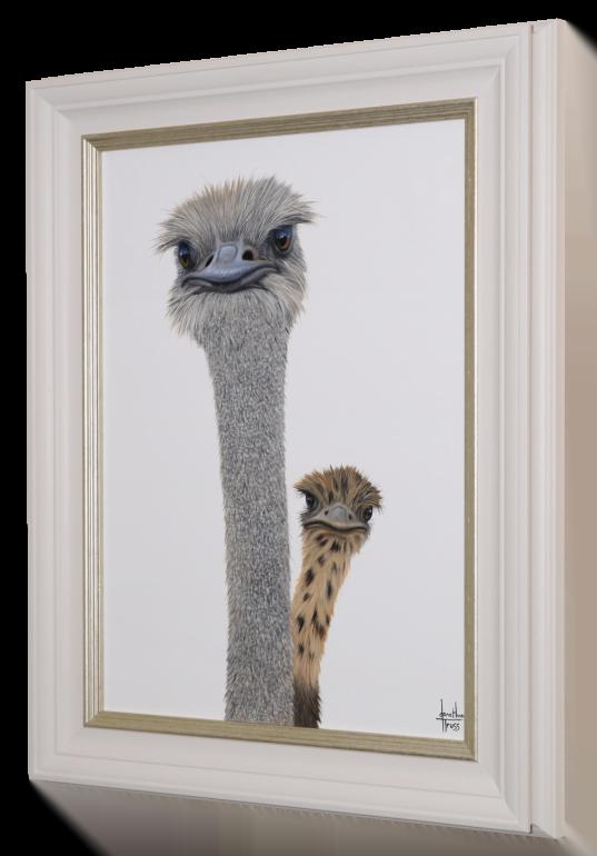 Peek-a-boo Framed Canvas by Jonathon Truss