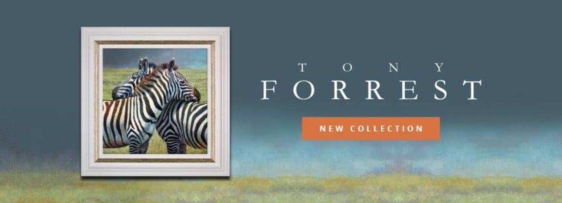 Tony Forrest | New Collection