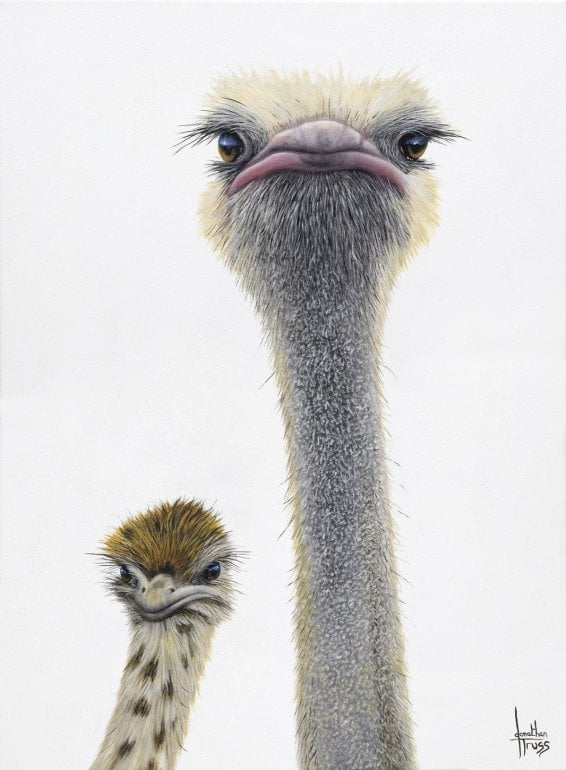 Like Father Like Son signed limited Paper print from Jonathan Truss - Mounted
