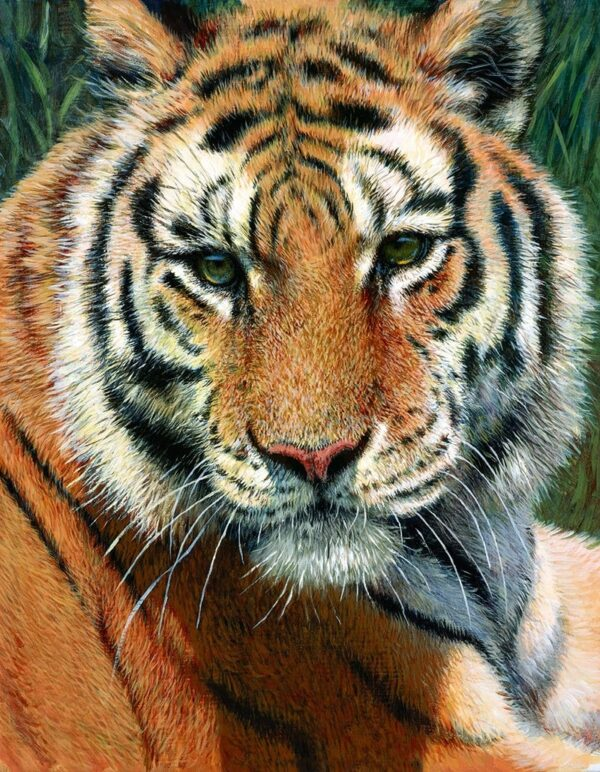 Wild Thing Signed Limited canvas print on board by Tony Forrest - unframed