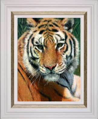Wild Thing Signed Limited canvas print on board by Tony Forrest - Framed in the artists recommended frame