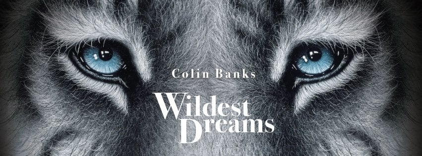 Colin Banks | Wildest Dreams