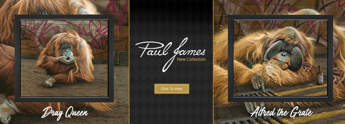 Paul James New Releases Banner