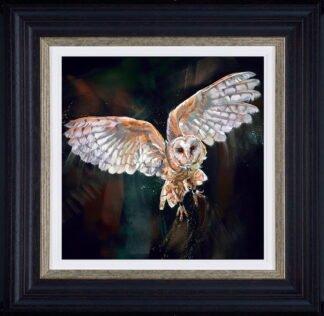night flight framed by Debbie Boon