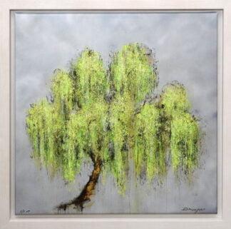 willow by daniel hooper framed