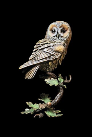 1083 Tawny Owl with Acorns Front