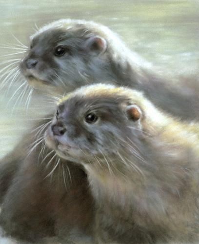 Otters by Vivien Walters