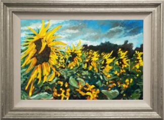 Sunflower Season by Timmy Mallett Framed