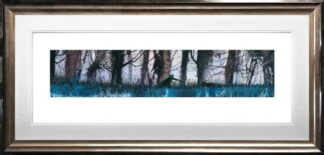 Walk on the Wildside by Sue Howells Framed
