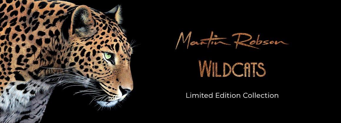 Martin Robson – Wildcats