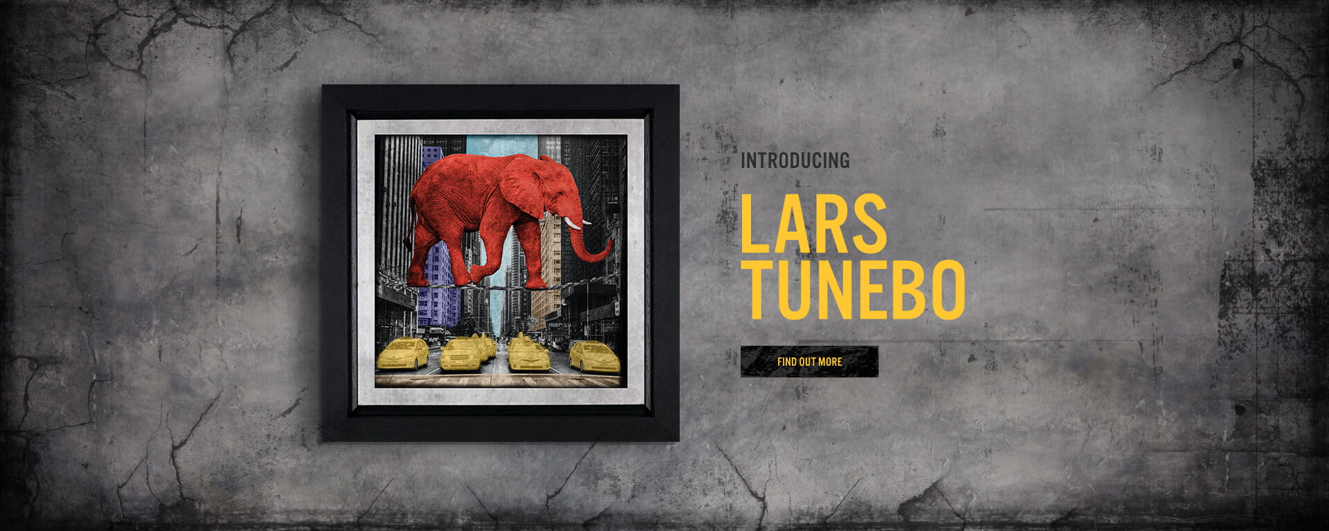 Introducing Lars Tunebo